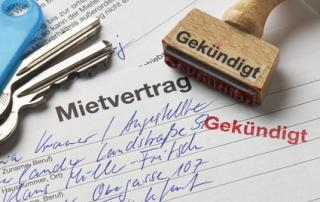Problemmieter Kündigung Vermüllte Wohnung Mietausfälle